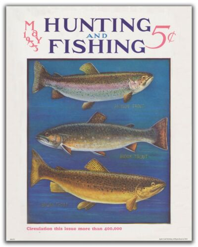 Trout Fly Fishing Magazine Cover Art Print 11x14 Vintage Lures Cabin Wall Decor