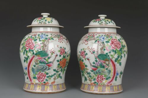 Fine Beautiful Chinese Pair Famille Rose Porcelain Peacock Pots