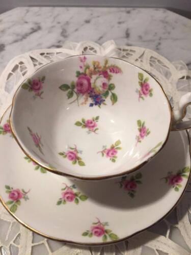 BEAUTIFUL  ROYAL STANDARD TEA CUP AND SAUCER HAND PAINTED ENGLAND