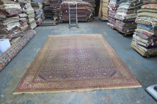 Antique India Agra Amritsar Oriental Rug Hand Knotted Wool 8'2 x 11' Allover