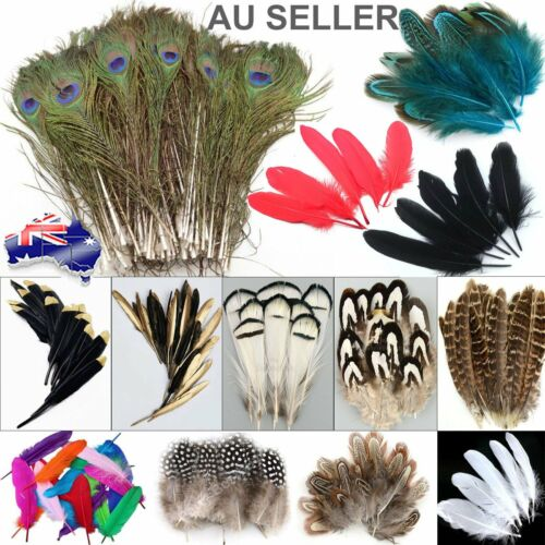 Mix Hen Pheasant Peacock Tail Eye Goose Feathers Wedding Millinery DIY Craft Par <br/> 32 Different Type,Size,Colour✓SDY Fast Free✓GST include