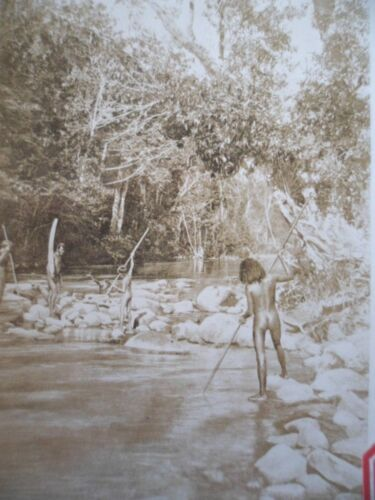 OLD EARLY PHOTO AUSTRALIAN ABORIGINAL BOY FISHING SPEAR QUEENSLAND  AUSTRALIA
