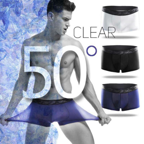 859e1446f9a Sexy Mens Ice Silk Quick Dry Boxer Briefs Shorts Trunks Underwear Breathable
