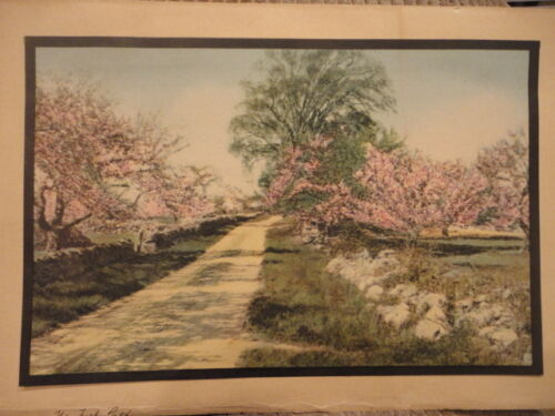 Wallace Nutting THE TURF PATH Print 6-1/2 x 9-1/2 Vintage