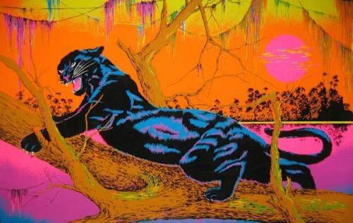 JUNGLE CAT - BLACKLIGHT POSTER - 23X35 FLOCKED 53100