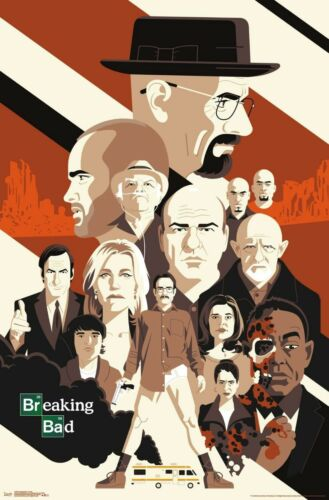 BREAKING BAD - CHARACTER COLLAGE POSTER - 22x34 - TV 17844
