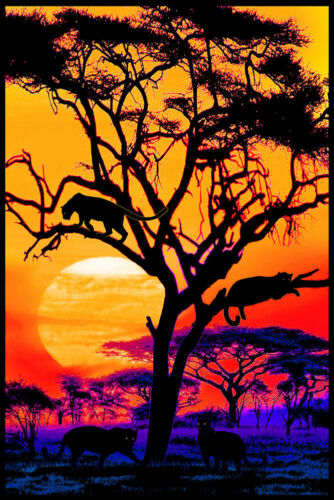 PANTHER PRIDE - BIG CATS BLACKLIGHT POSTER - 24X36 - SUNSET 433