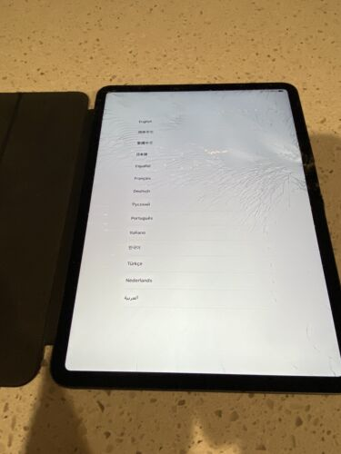 Apple iPad Pro 1st Gen. 256GB, Wi-Fi + 4G (Unlocked), 11 in - Space Grey (AU...