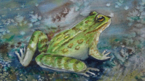 """ANTIQUE CHINESE """"FROG"""" WATERCOLOR ON PAPER PAINTING FRAMED WITH GLASS"""