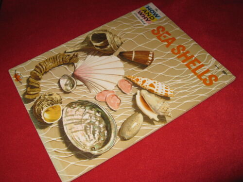 How & Why Wonder Book of SEA SHELLS  ~ Donald Low   VINTAGE great learning  W♥W!
