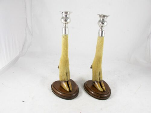 PAIR OF TAXIDERMY ANTELOPE LEG & HOOF CANDLESTICKS WITH STERLING SILVER C1911