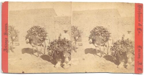 Henry Buehman & Co Stereoview of Pack Mules in Old Tucson s1880s