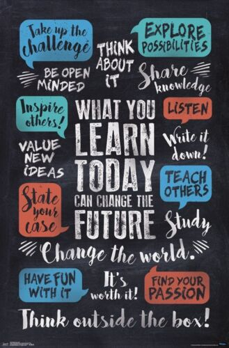 WHAT YOU LEARN - INSPIRATIONAL POSTER - 22x34 - QUOTES 15378