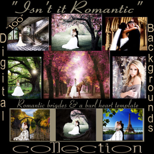 Digital Backdrops Photography Backgrounds A Romantic Love Story Collection J