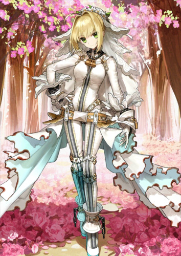 [JP] Fate Grand Order FGO Nero(bride) + 0-100SQ starter account