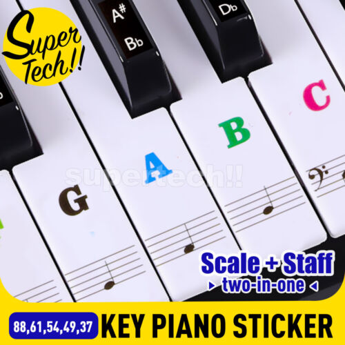 TRANSPARENT Keyboard Piano Stickers 88/61/54/49/37 KEYS Sticker Note For Learner