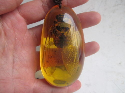 3.11 inch/Chinese natural amber cicada necklace pendant