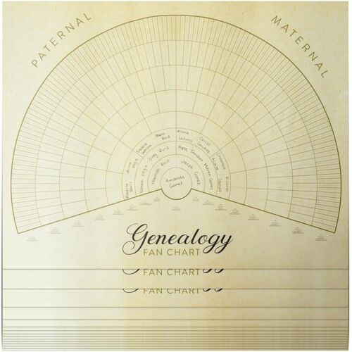 Blank Family Tree Genealogy Charts (17 x 22 Inches, 15 Pack) <br/> HIGH QUALITY√US STOCK√FAST SHIPPING√TOP US SELLER√