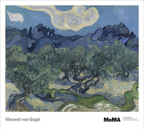 The Olive Trees, 1889 by Vincent van Gogh Art Print MOMA Museum Poster 27x30