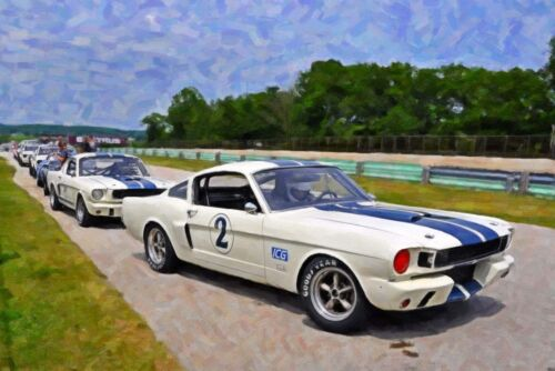 1966 Ford Mustang GT350 Trans Am Vintage Classic GT Race Car Photo (CA-0591)