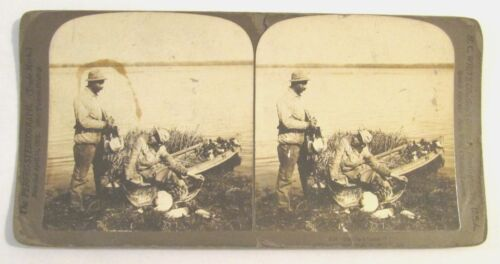 ANTIQUE 1904 STEREOVIEW PHOTO / ISN'T HE A BUSTER / H C WHITE