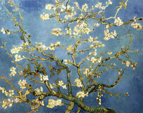 Van Gogh Branches with Almond Blossom Fine Art Giclee Canvas Print 20''x24''