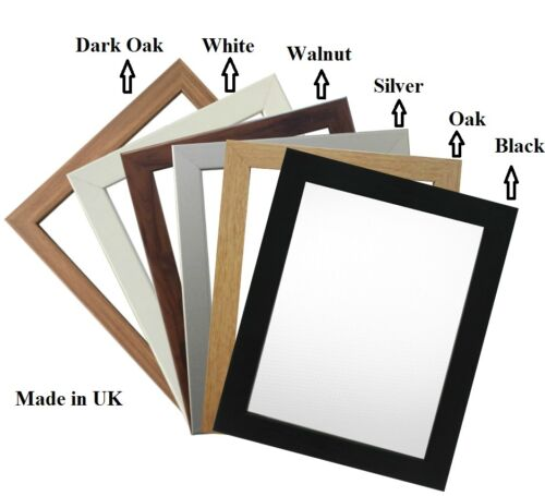 PICTURE FRAME PANORAMA GALLERY 22 COLORS FROM 30x48 TO 30x58 INCH FRAME NEW