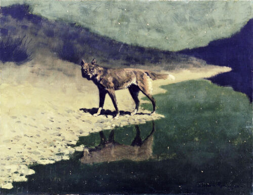 """Remington's Moonlight Wolf Painting Large 12"""" x 15.5"""" Real Canvas Art Print"""