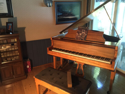 Antique 1917 Aeolian Duo-Art Reproducing Baby Grand Piano