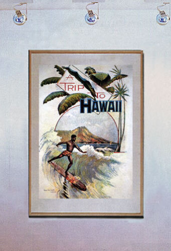 A Trip To Hawaii 15x22 Old surfing Art Print Surfing Hand Numbered Edition