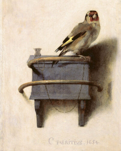The Pet Goldfinch Aviary Yellow Bird Finch Painting 8x10 Real Canvas Art Print