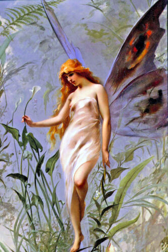 Large 12x18 Beautiful Fatina Lily Fairy Young Woman Girl Canvas Art Print