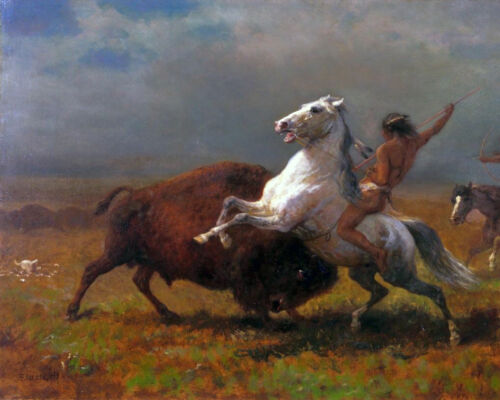 Native American Indian And The Last Buffalo Painting Real Canvas Art Print New