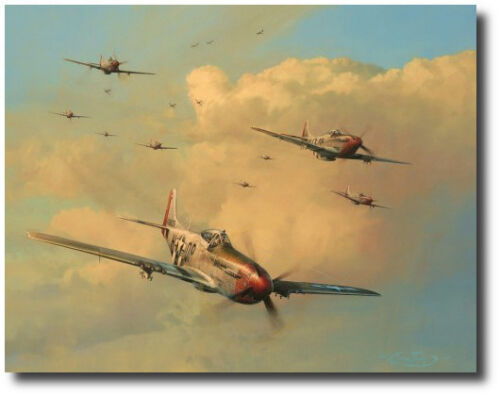 Eagles on the Rampage by Robert Taylor - P-51 Mustang - Signed by (Ten) Aces!!