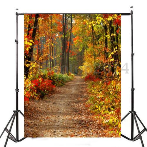 3x5FT Photography Vinyl Background Autumn Fall Forest Backdrops Studio Props