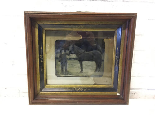 Antique Silver Gelatin Tintype Photo Photograph of Man & Horse