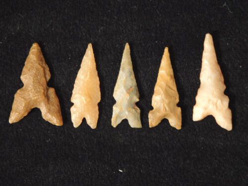 A Lot of Very Nice Ancient North African Arrowheads or Points! 55.7