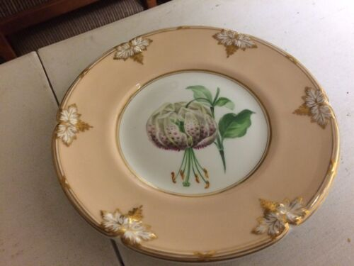 Antique 19th Century Davenport China Hand Painted Cabinet Plate Floral's #12