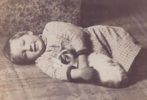 1900s CABINET CARD PHOTO YOUNG CHILD LYING ON FLOOR & HOLDING SPOTTED PET CAT