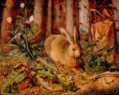 The Hare Of The Woods Forest Rabbit Oil Painting Real Canvas Giclee Art Print