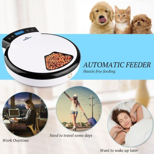 Electronic Automatic Pet Feeder Food Dispenser For Dogs & Cats Programmable AUTO