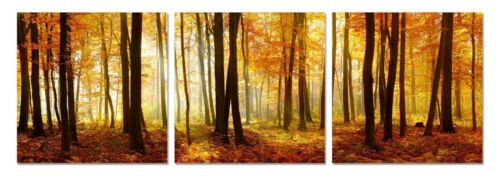 Picture Set Sublime JURA Forest 60*60 Square Shaped acrylic painting 3 set NEW!!
