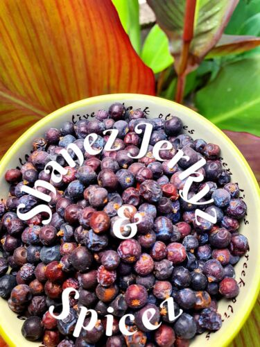 Juniper Berries 200g  Premium Quality Shanez Herbs and Spices