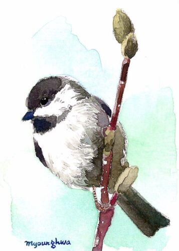 ACEO Limited Edition  - Chickadee perching