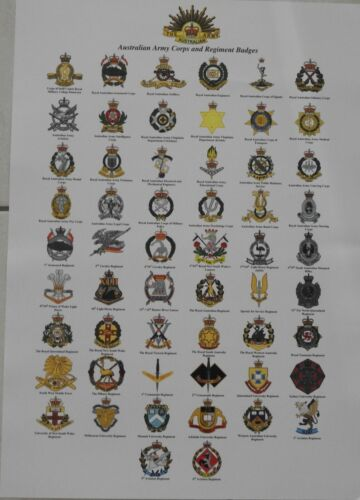 Australian Army Corps and Regiment Badges chartModern, Current - 36066