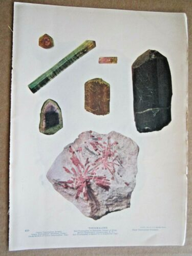 1901 ANTIQUE GREEN, RED, BROWN, BLACK TOURMALINE CRYSTAL STONES LITHOGRAPH PRINT