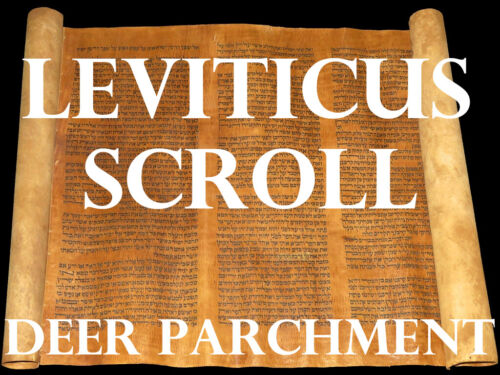 TORAH SCROLL BIBLE JEWISH FRAGMENT FROM HOLLAND 250 YRS OLD Leviticus 1:1–5:26