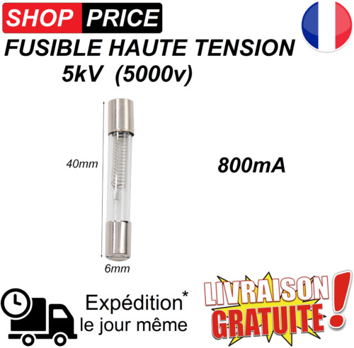 Fusible haute tension pour micro-ondes 5KV 0.8A (800mA) NEUF.