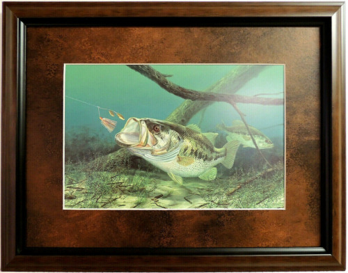 """BASS FISH PICTURE """"UNHAPPY CAMPER"""" FISHING RANDY MC GOVERN MATTED FRAMED 16X12"""
