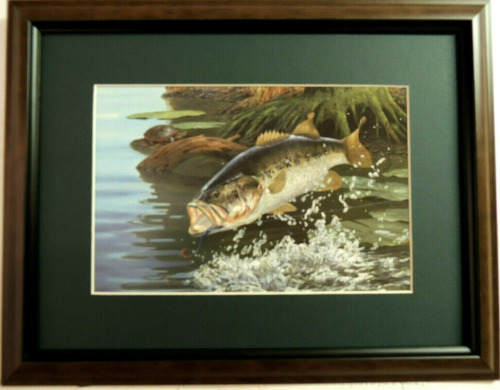 """BASS FISH PICTURE """"SPLASH DANCING""""TURTLE RANCY MC GOVERN MATTED FRAMED 16X12"""